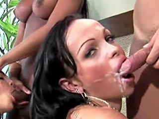 Crazy Shemales Suck Each Others Hard Cocks At Wild Party